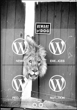 Wordpress Mobil Uygulama Merkezi